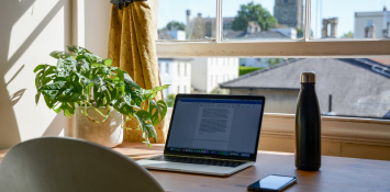 A work from home setup shows a desk with a plant and a laptop