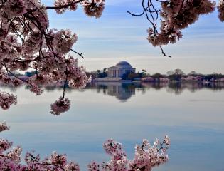 Independent Traveler Human Resources internships in Washington DC
